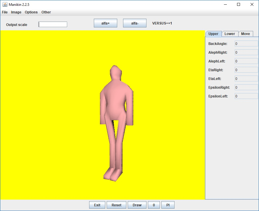 Manikin virtual man model